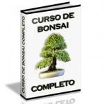 Curso completo de Bonsai
