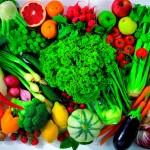 Manual do Cultivo e Manejo de Hortaliças