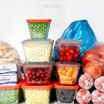 Apostila – Curso de Congelamento de alimentos