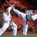 Aprenda Tae Kwon Do